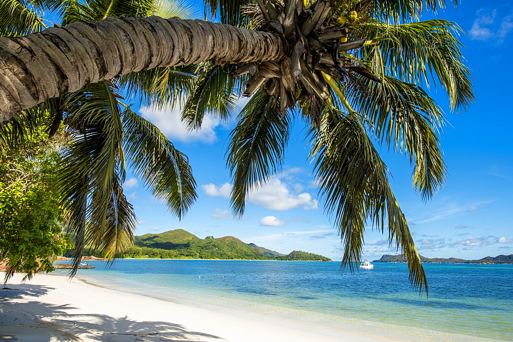 Anse Government beach, Praslin, Republic of Seychelles, Indian Ocean, Africa