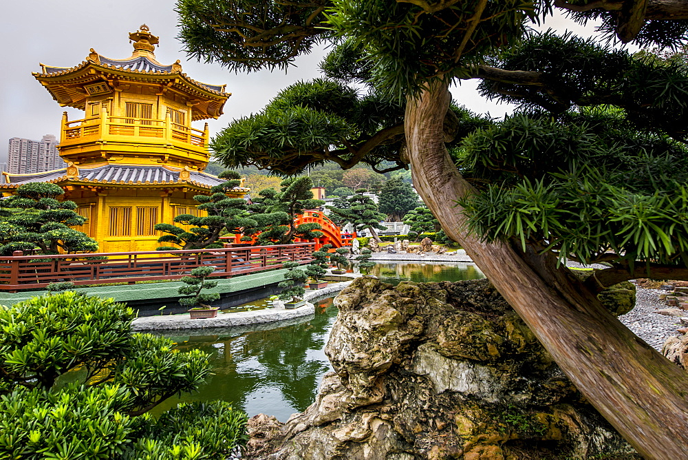 The pagoda at the Chi Lin Nunnery and Nan Lian Garden, Kowloon, Hong Kong, China. - 796-2420