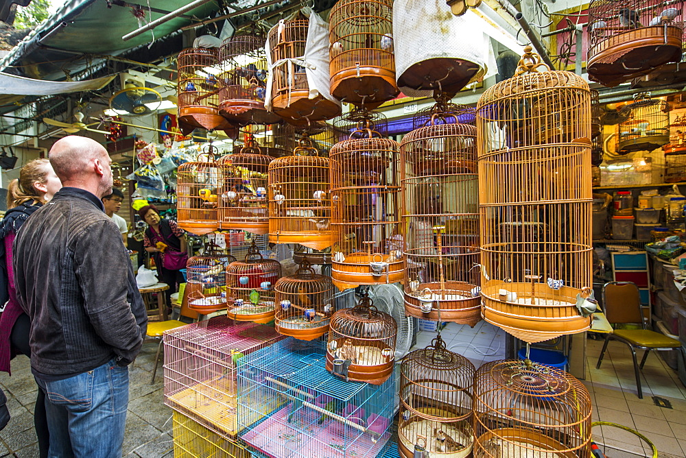 Yuen Po Street Bird Garden market, Mongkok, Kowloon, Hong Kong, China.