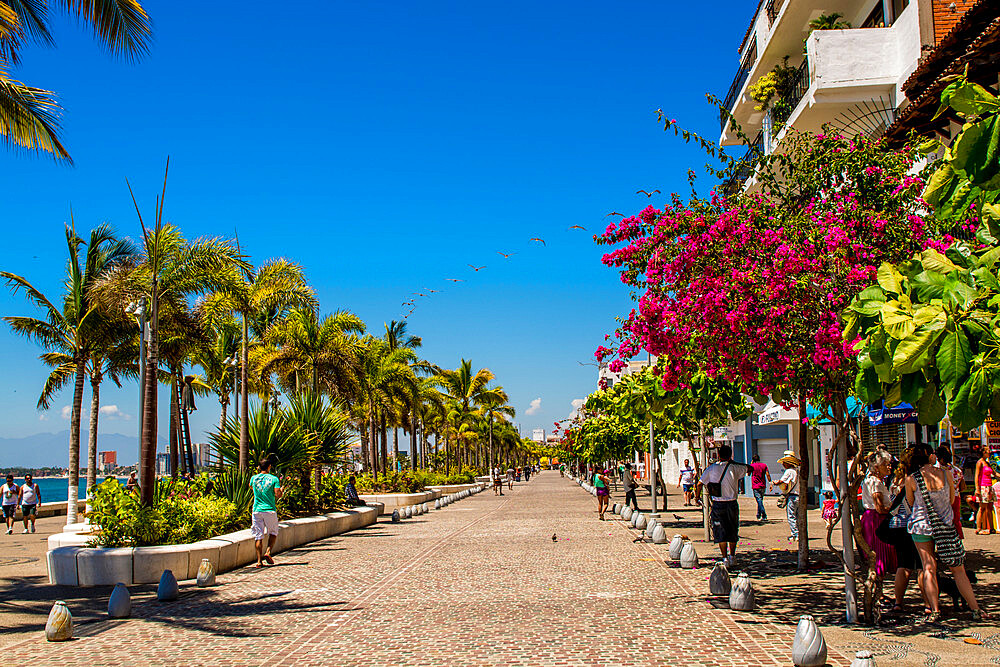 The Malecon, Puerto Vallarta, Jalisco, Mexico. - 796-2469