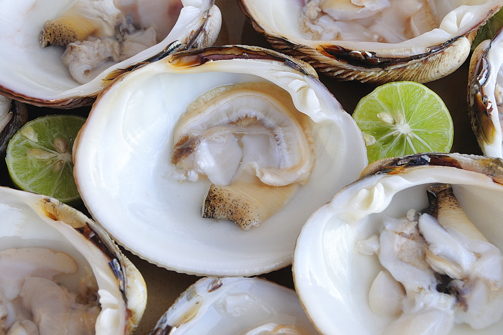 Mexico, Oaxaca, Huatulco, Almejas or clams served in their shells with cut halves of lime.