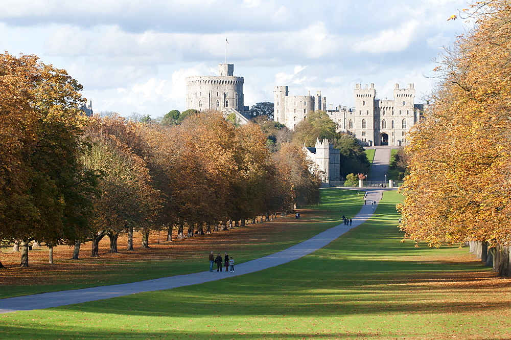 England, Berkshire, Windsor, The long walk leading to the castle. - 797-10851