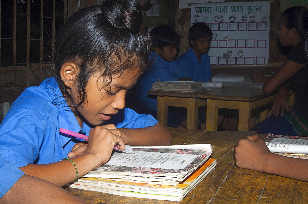 Bangladesh, Chittagong Division, Rowangchhari Upazila, Mro minority ethnic group children sat in primary school classroom with teaching aids on walls around them provided by development programme.,