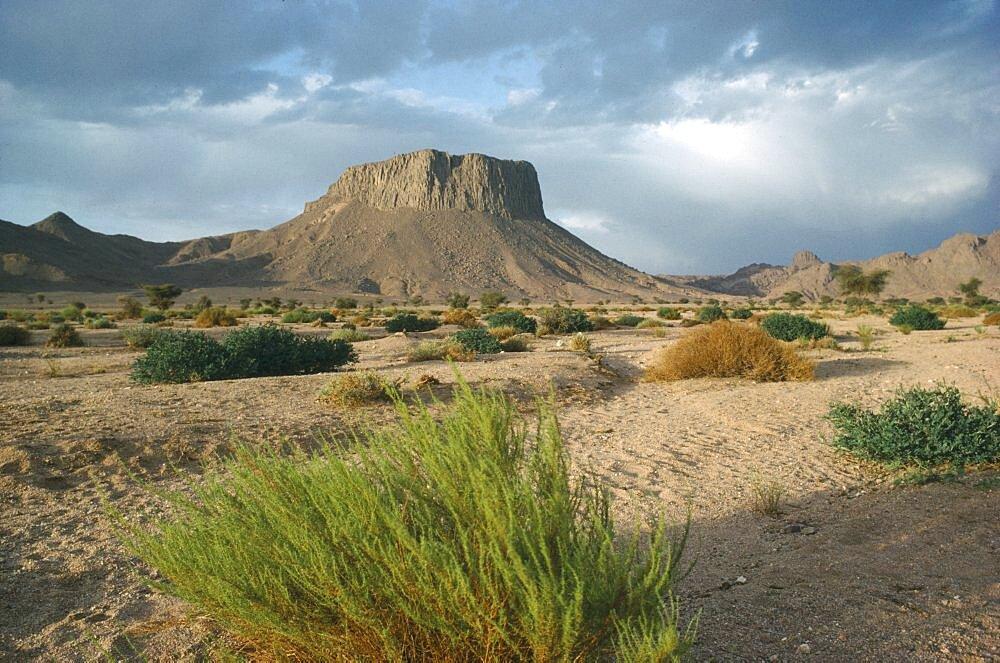 ALGERIA  Hoggar Mountains Semi desert landscape with rock formations near Tamanrasset. Ahaggar Mountains.