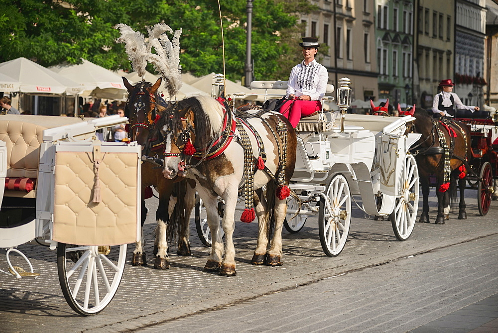 Poland, Krakow, Rynek Glowny or Main Market Square, horse drawn tourist carriages awaiting customers.
