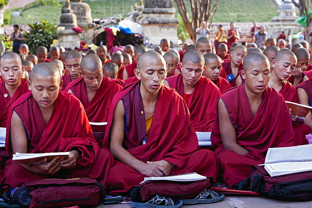 India, Bihar, Bodhgaya, Large group of seated, young Buddhist monks chanting and reading prayers at a ceremony in the grounds of the Mahadbodhi Temple.
