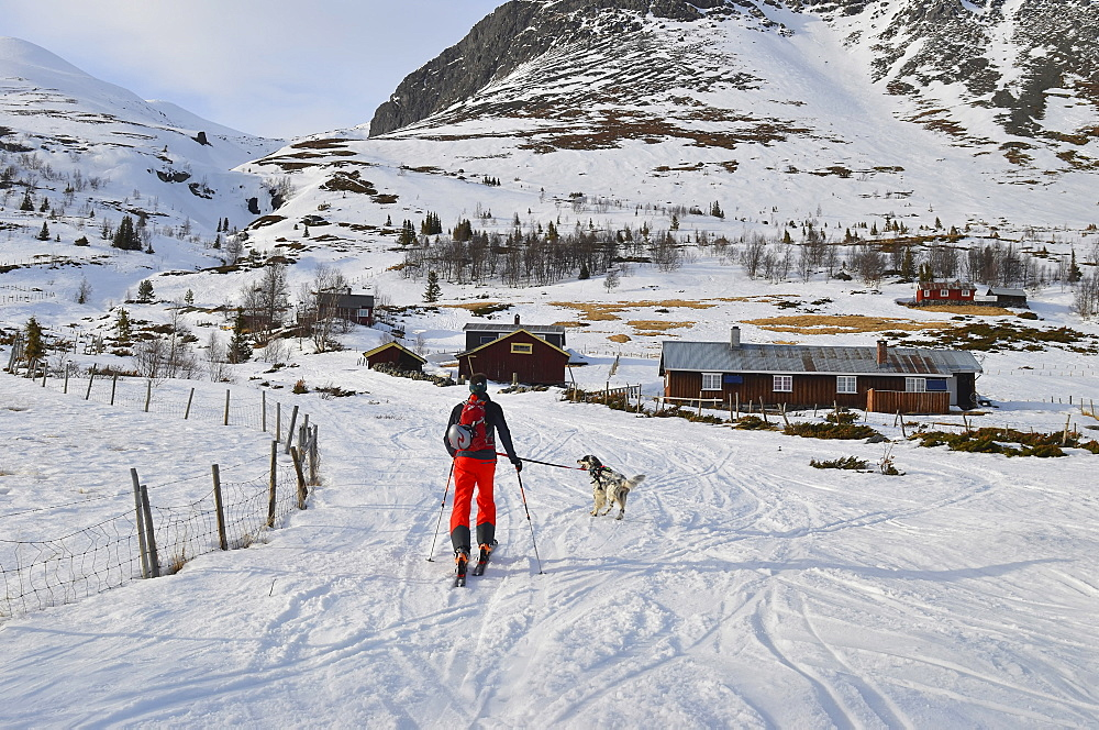 Norway, Hemsedal, Cross country skier and dog heading off into the mountains.