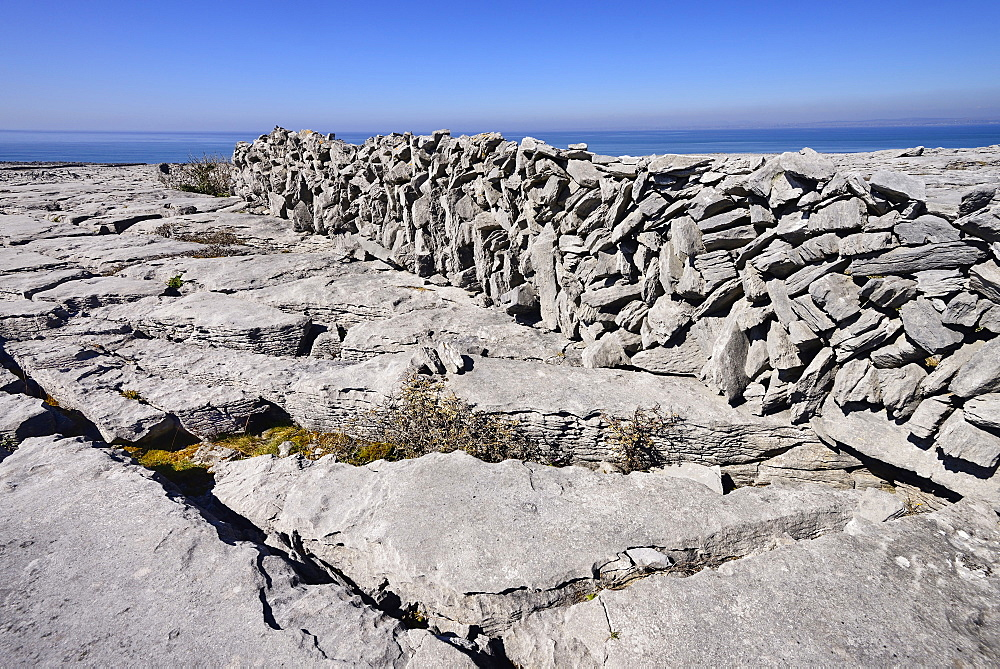 Ireland, County Clare, The Burren, Clints and grykes below a typical stone wall.