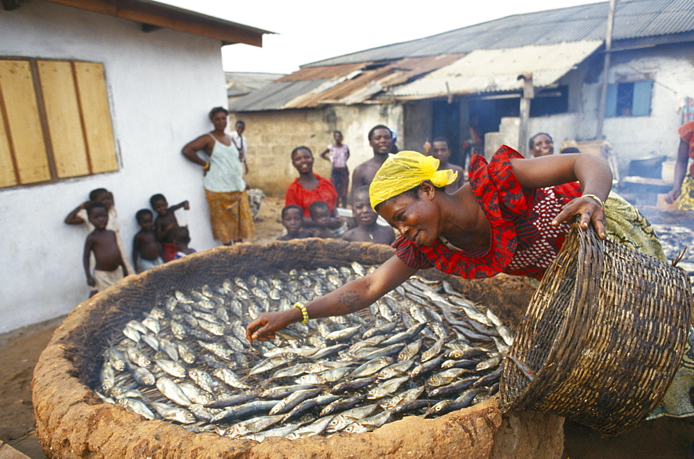 GHANA  Near Accra Woman spreading small fish in a large basket for smoking