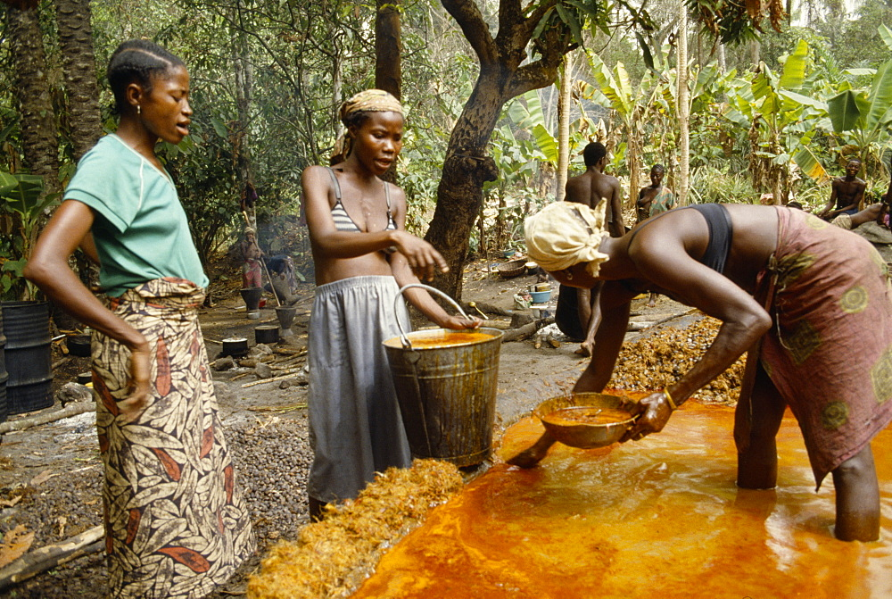 SIERRA LEONE  The Mende Women processing Palm Oil