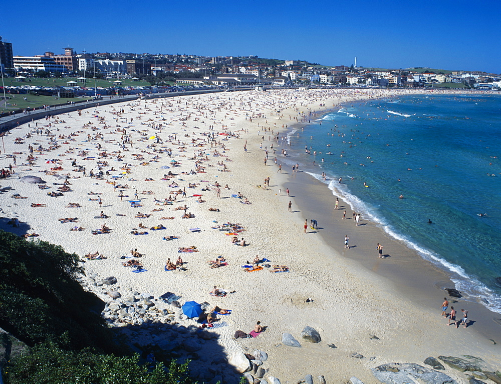 AUSTRALIA New South Wales Sydney View over busy Bondi Beach