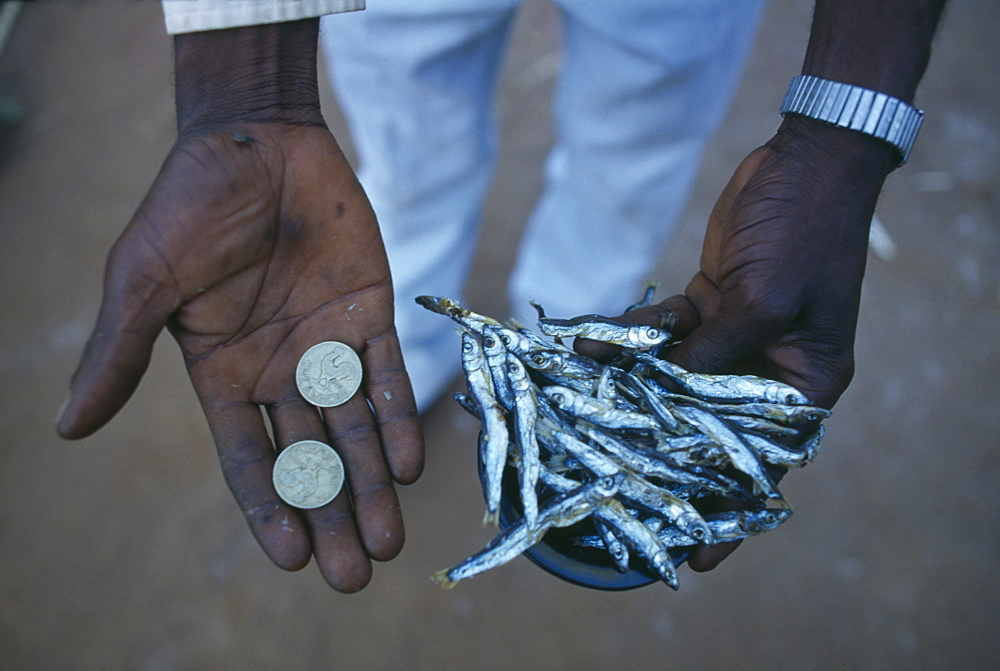 MALAWI  Mulanje Micro-credit loan.  Cropped shot of Peter Makfero Hamilton who travels to Lake Malawi to buy fish to resell in business started using money lent by his village credit union.
