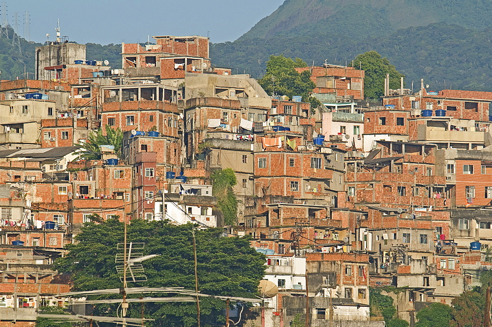 BRAZIL Rio de Janeiro Favela or slum on hillside above Copacabana neighbourhood, bedcovers and washing hanging on lines unplastered red brick houses greenery and TV antenna - 797-8081