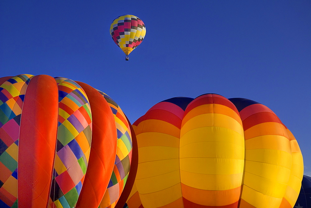 Annual balloon fiesta colourful hot air balloons in flight, Albuquerque, New Mexico, United States of America