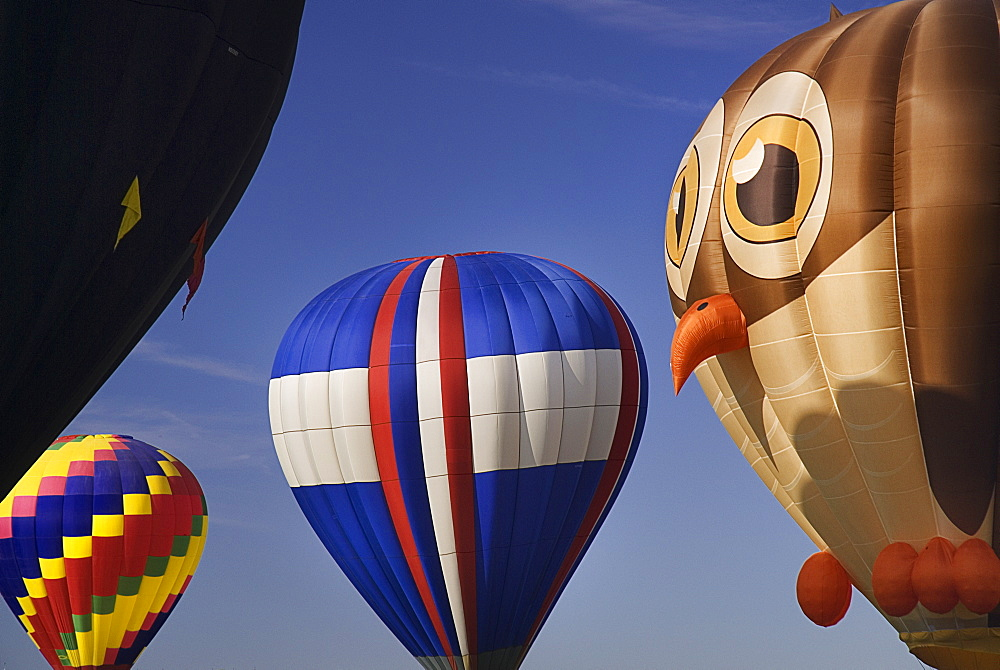 Annual balloon fiesta colourful hot air balloons in flight with owl shaped balloon part seen in the foreground, Albuquerque, New Mexico, United States of America - 797-9158