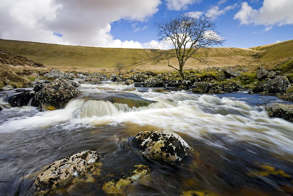 River Tavy flowing through Tavy Cleave, Dartmoor National Park, Devon, England, United Kingdom, Europe