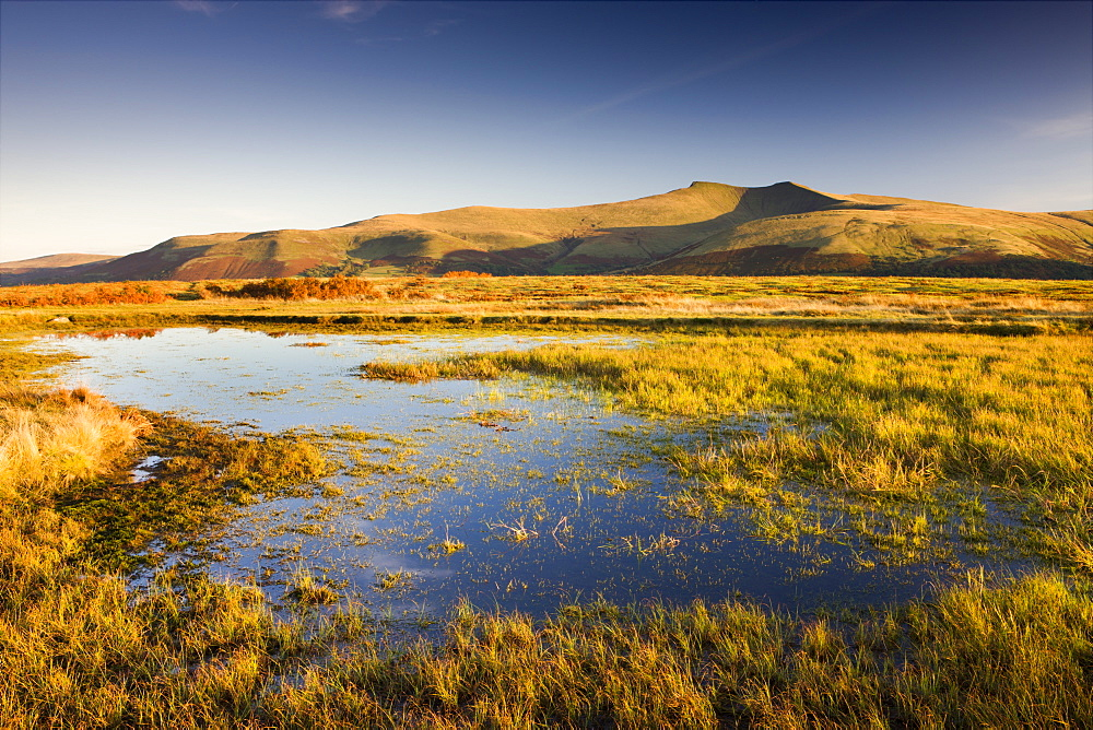Brecon Beacons Mountain range, including Pen y Fan viewed from Mynydd Illtud Common, Brecon Beacons , Wales, United Kingdom, Europe