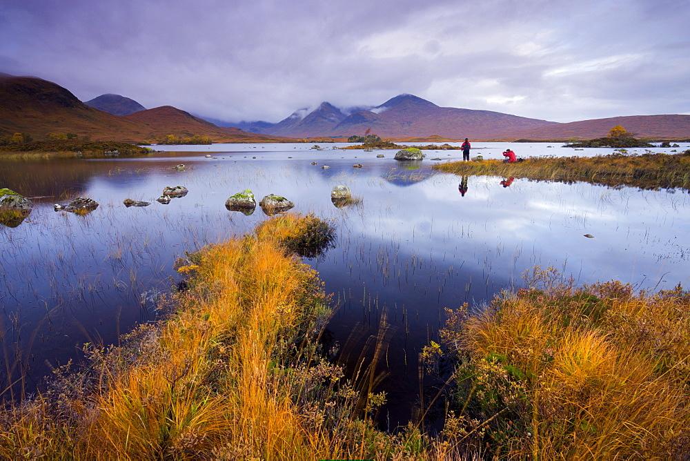 Photographers capturing the autumn colours beside Lochan Nah Achlaise on Rannoch Moor, Highlands, Scotland, United Kingdom, Europe - 799-246