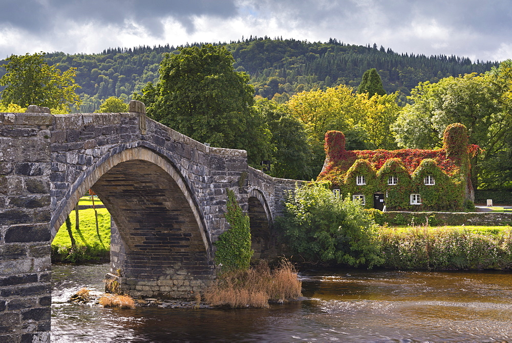 Ty Hwnt i'r Bont ivy covered cottage and tea rooms beside stone bridge crossing the River Conwy at Llanwrst, Snowdonia National Park, Wales, United Kingdom, Europe