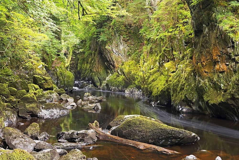 The Fairy Glen, Betws-y-Coed, Snowdonia National Park, Wales, United Kingdom, Europe
