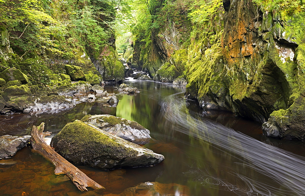 River Conwy running through the Fairy Glen, Betws-y-Coed, Snowdonia National Park, Wales, United Kingdom, Europe
