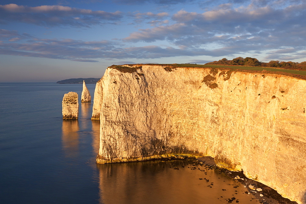 Morning sunshine illuminates Handfast Point on the Jurassic Coast, UNESCO World Heritage Site, Dorset, England, United Kingdom, Europe