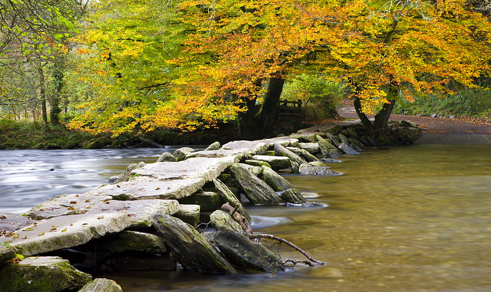 Autumn at Tarr Steps on the River Barle, Exmoor National Park, Somerset, England, United Kingdom, United Kingdom, Europe - 799-265