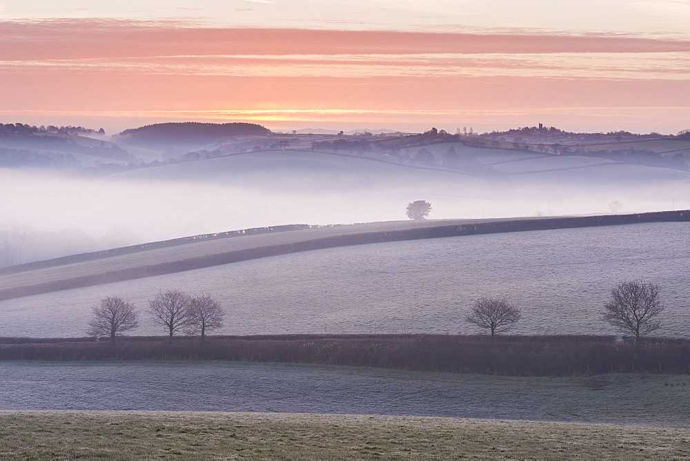 Mist covered frosty countryside near Morchard Bishop, Devon, England, United Kingdom, Europe