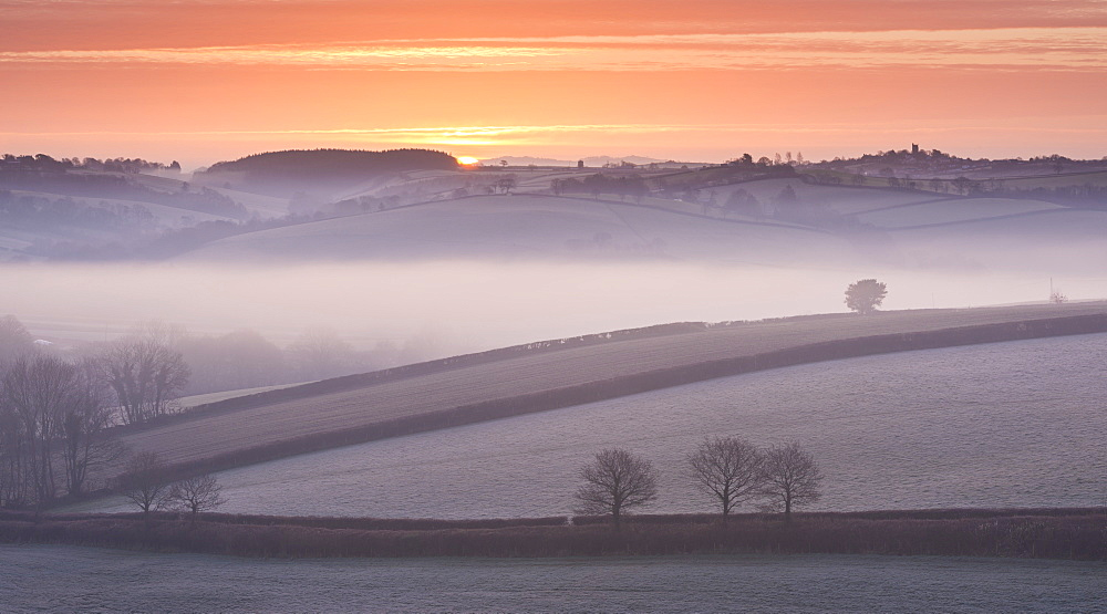 Frost and mist covered winter countryside, Morchard Bishop, Devon, England, United Kingdom, Europe