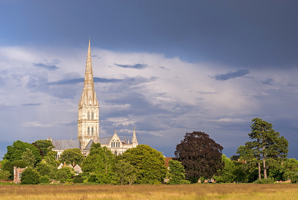 Salisbury Cathedral on a summer evening, Salisbury, Wiltshire, England, United Kingdom, Europe