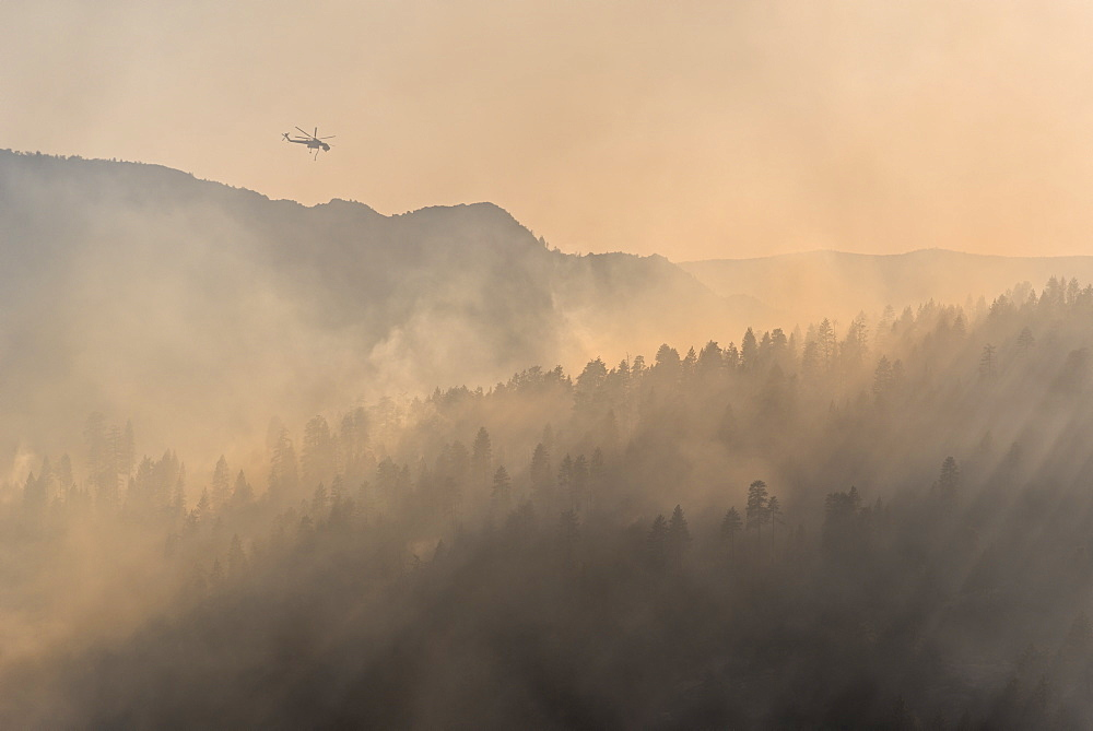 Firefighting helicopter fighting the Dog Rock wildfire above the smoke filled forests of Yosemite National Park, UNESCO World Heritage Site, California, United States of America, North America