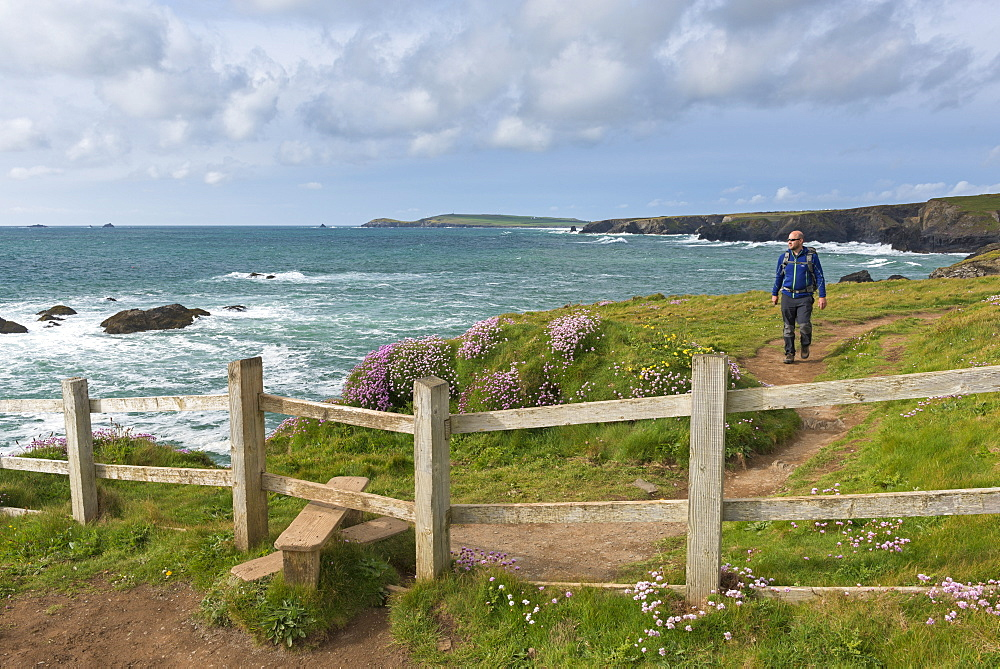 Man walking the South West Coast Path near Trevose Head, Cornwall, England, United Kingdom, Europe