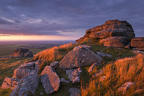 Evening sunlight illuminates West Mill Tor on Dartmoor in summer, Dartmoor National Park, Devon, England, United Kingdom, Europe - 799-3135