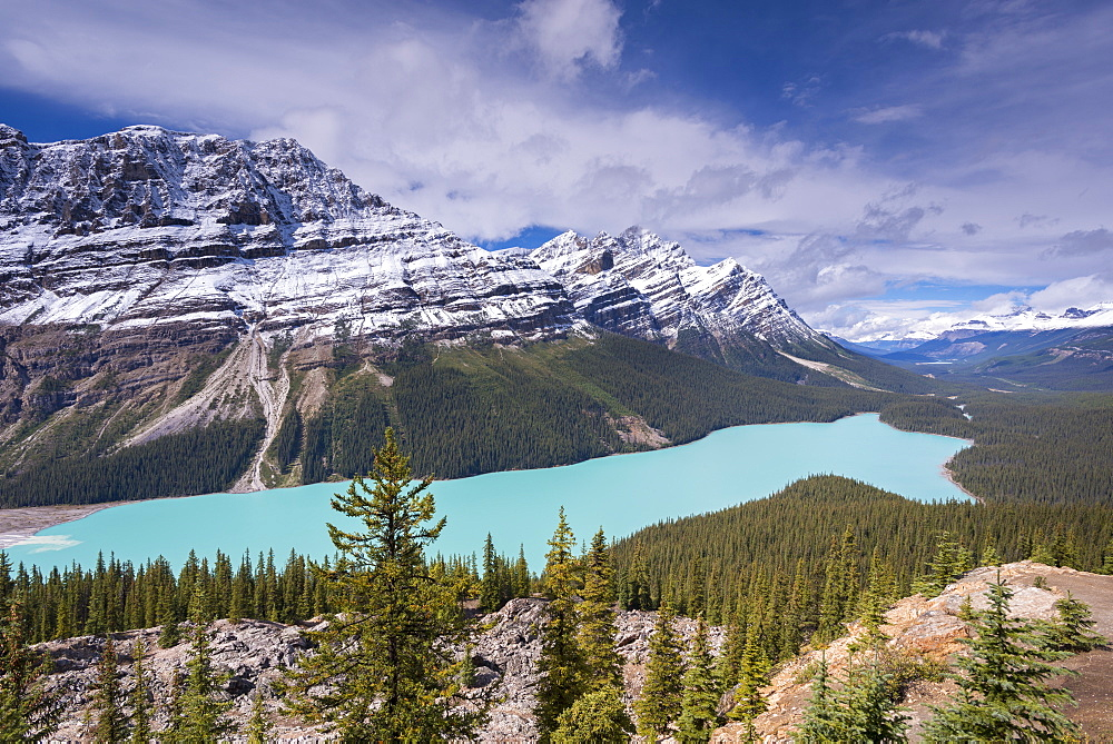 Beautiful Peyto Lake in the Canadian Rockies, Banff National Park, UNESCO World Heritage Site, Alberta, Canada, North America
