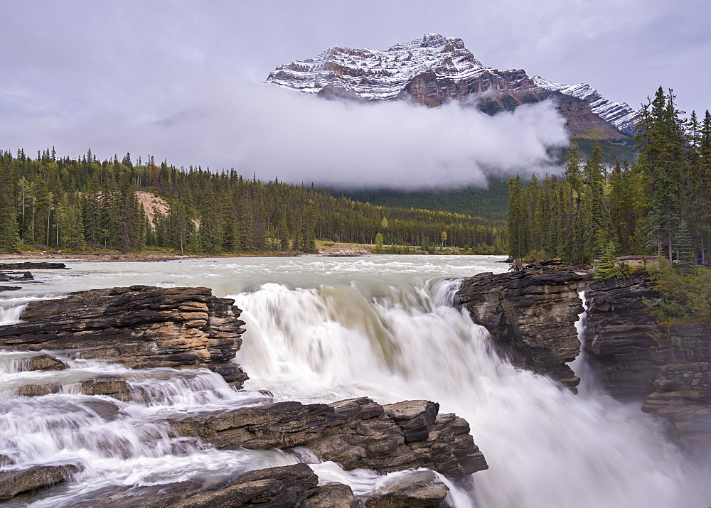 Athabasca Falls in the Canadian Rockies, Jasper National Park, UNESCO World Heritage Site, Alberta, Canada, North America