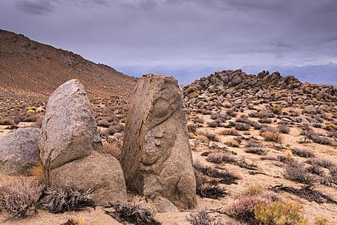 Split rock in the Buttermilk Hills near Bishop, California, United States of America, North America