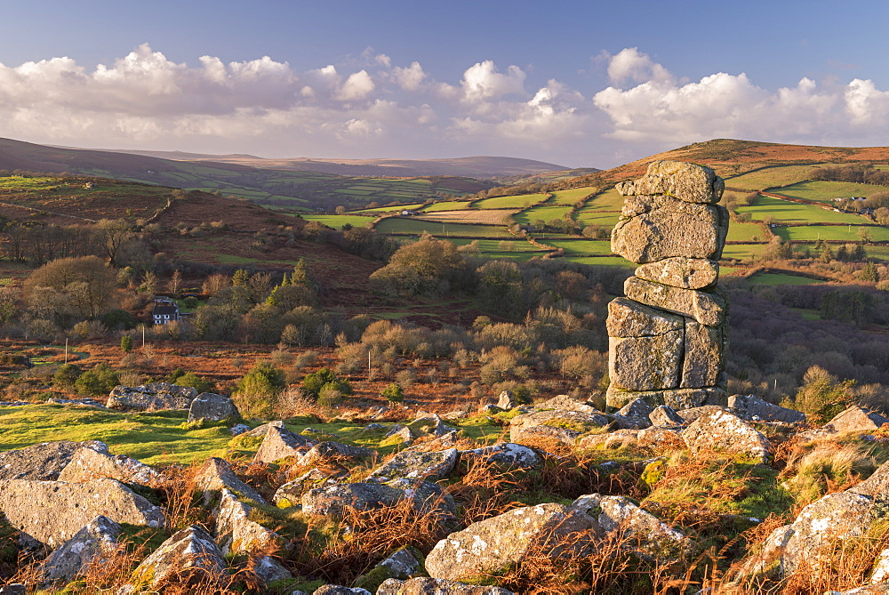 Bowerman's Nose  on Hayne Down, Dartmoor, Devon, England, United Kingdom, Europe