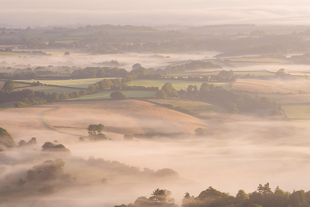Mist covered rolling countryside near Chagford, Dartmoor National Park, Devon, England. Summer (July) 2015. - 799-3328