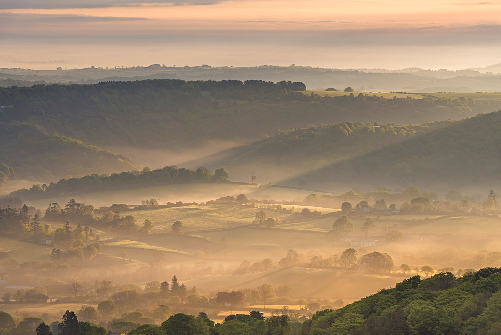 Mist covered rolling countryside at dawn, Dartmoor National Park, Devon, England, United Kingdom, Europe