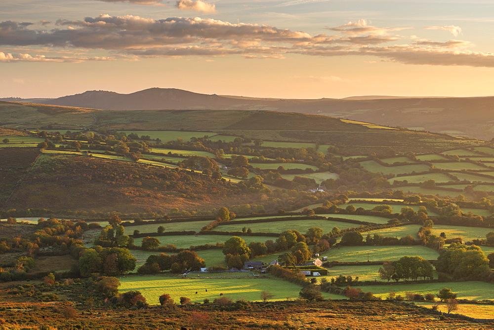 Rolling Dartmoor countryside near Ponsworthy, Devon, England. Autumn (October) 2016.