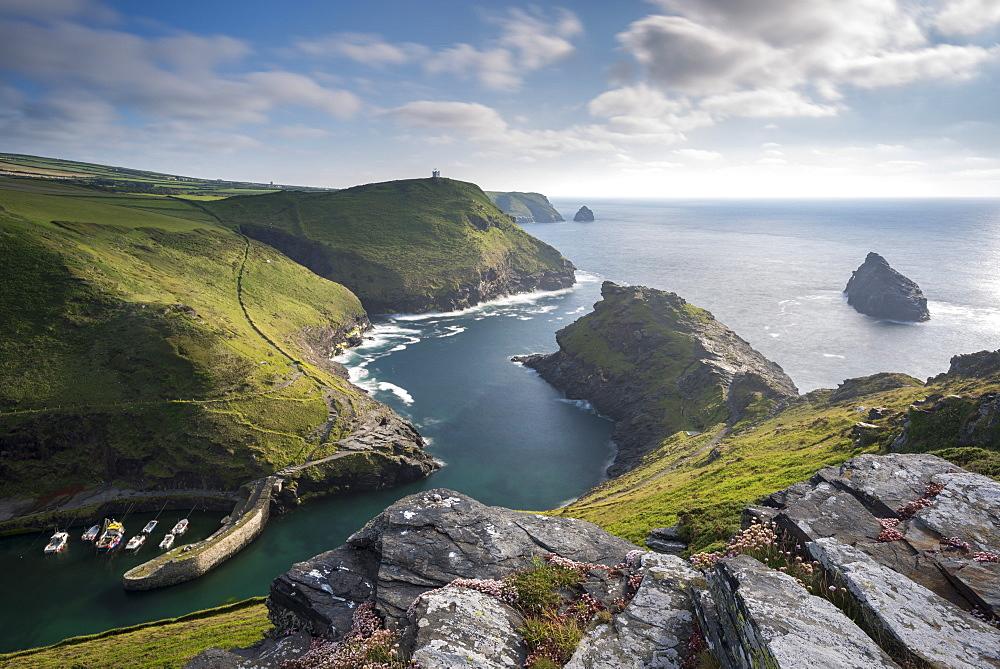 Dramatic North Cornish coastal scenery at Boscastle, Cornwall, England. Summer (June) 2015