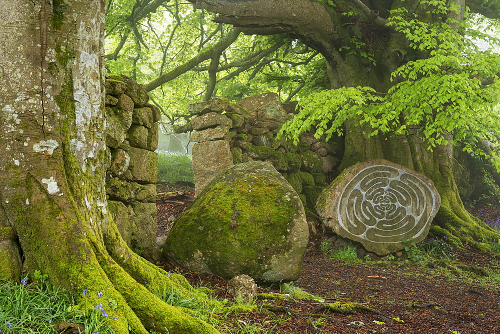 Stone sculpture by renowned British artist Peter Randall-Page in Whiddon Deer Park, Dartmoor, Devon, England, United Kingdom, Europe - 799-3392