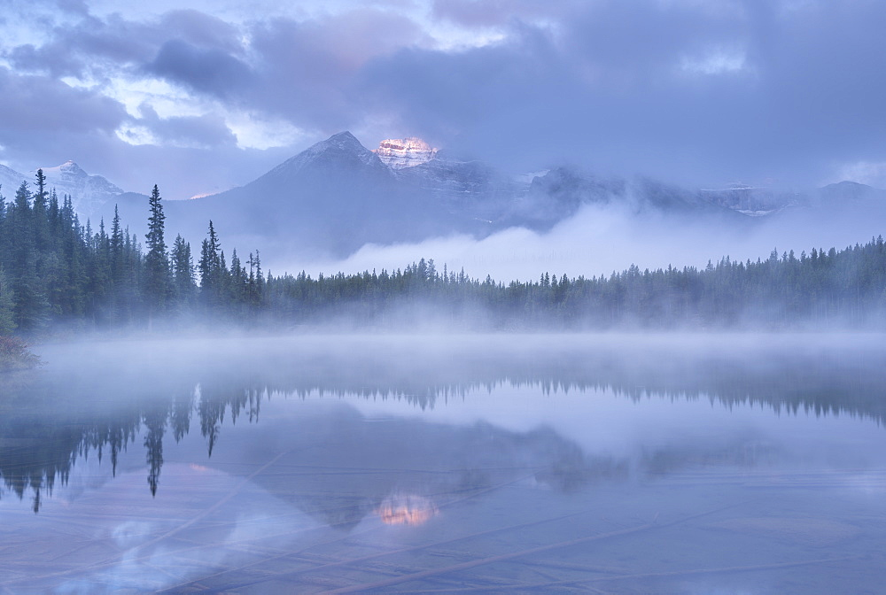 Misty morning in the Canadian Rockies, Herbert Lake, Banff National Park, UNESCO World Heritage Site, Alberta, Canada, North America - 799-3396