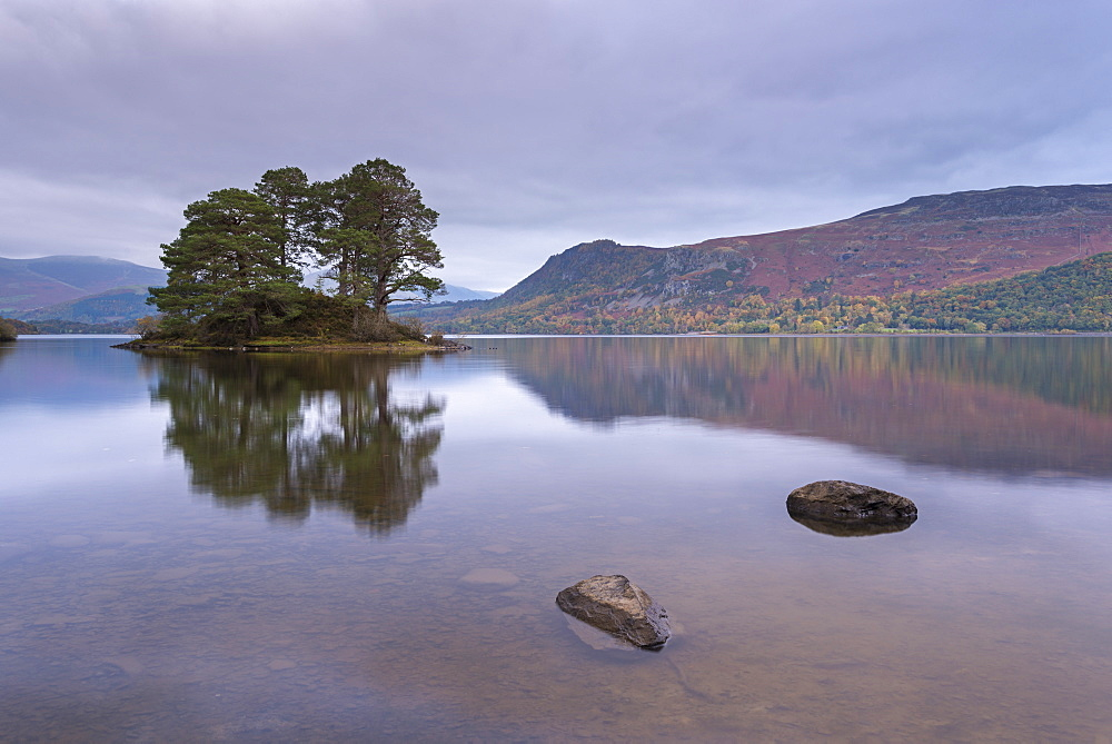 Island in the tranquil waters of Derwent Water, Lake District National Park, Cumbria, England, United Kingdom, Europe - 799-3416
