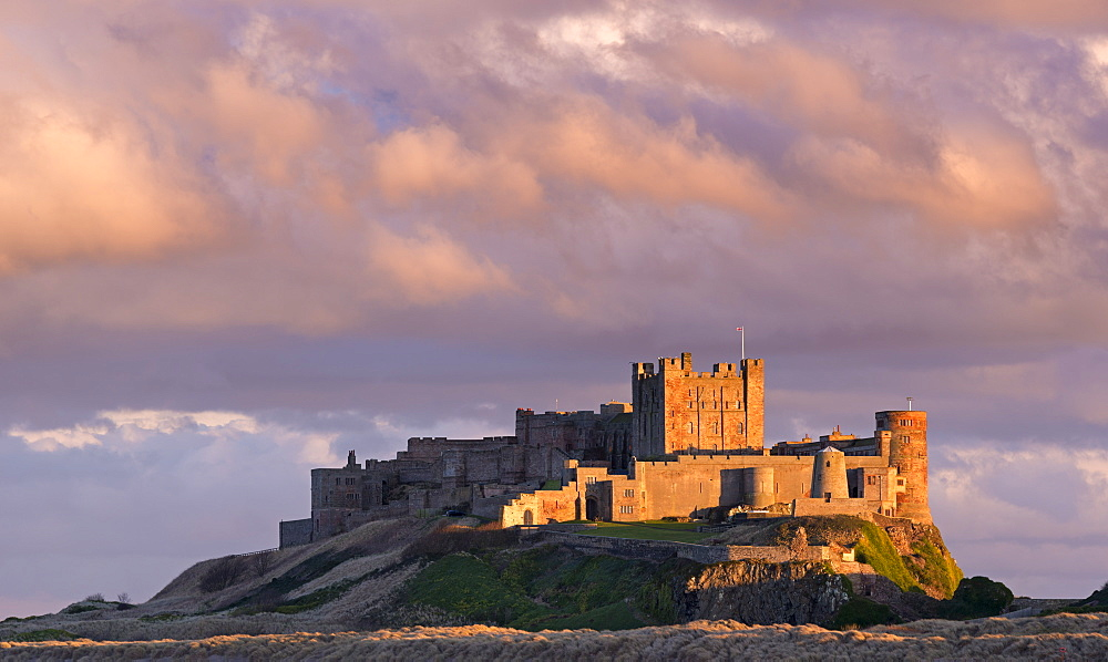 Rich evening sunlight glows against Bamburgh Castle at sunset, Northumberland, England, United Kingdom, Europe - 799-3428