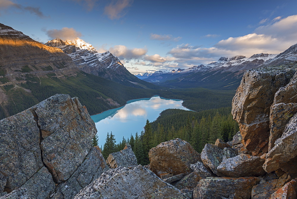 Early morning vista of Peyto Lake in the Canadian Rockies, Banff National Park, UNESCO World Heritage Site, Alberta, Canada, North America - 799-3460