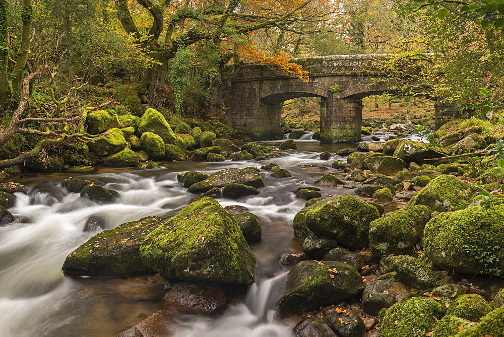 Stone bridge spanning the River Plym in Dartmoor National Park, Devon, England, United Kingdom, Europe - 799-3478