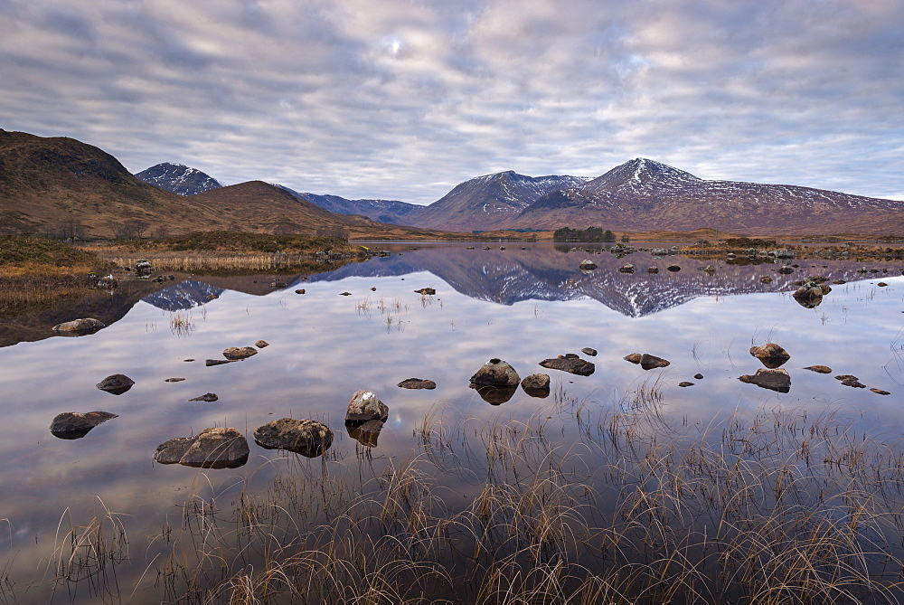Mirror like reflections on Lochan na h-achlaise on Rannoch Moor, Highlands, Scotland, United Kingdom, Europe - 799-3484