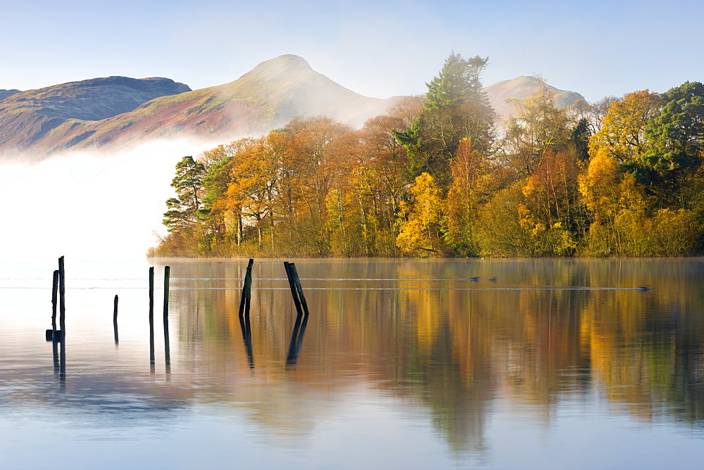 Autumn foliage on the banks of Derwent Water, Keswick, Lake District National Park, Cumbria, England, United Kingdom, Europe - 799-351