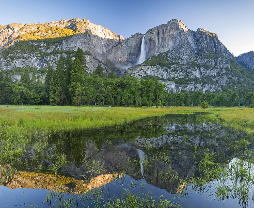 Yosemite Falls reflected in a flooded Cooks Meadow, Yosemite Valley, Yosemite National Park, UNESCO World Heritage Site, California, United States of America, North America